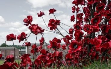 What's On This Weekend: Soldier On, The Poppies Tour & Mirabel